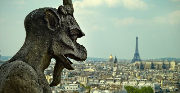 view from top of Notre-Dame in Paris